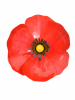 Metal Red Poppy - Magnet