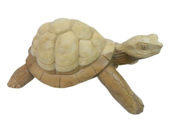 Wooden Tortoise Carving - Collection Only