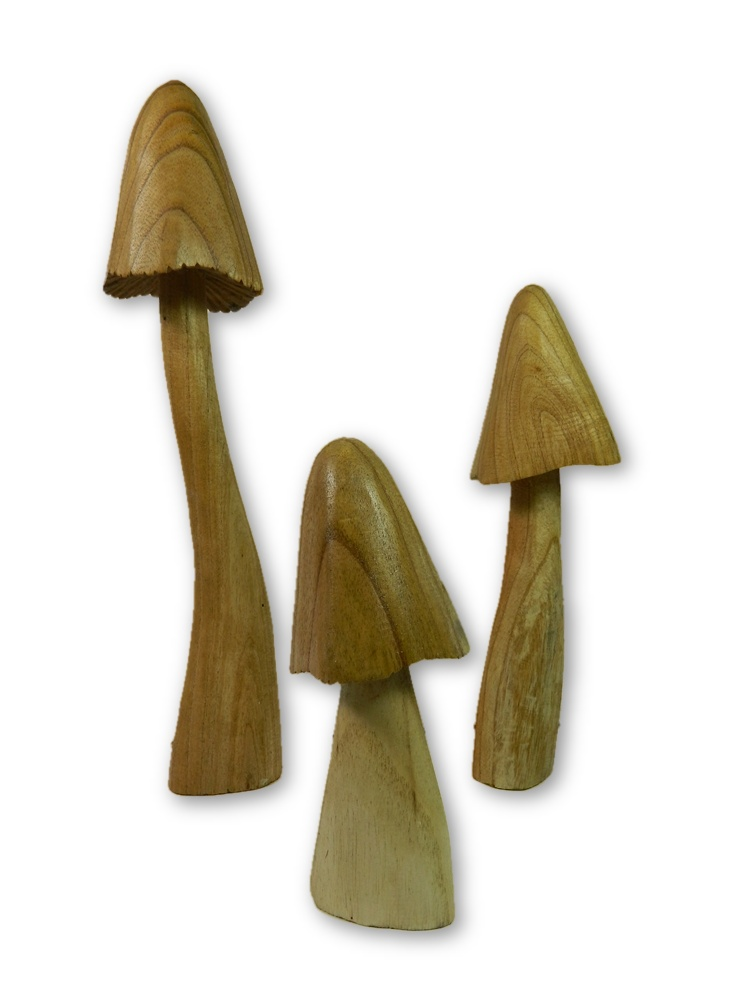 Wooden Closed Cup Mushrooms - Set of 3
